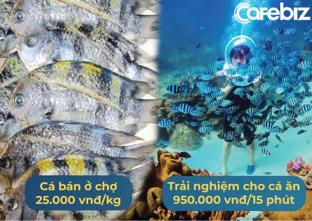 Từ chối deal triệu đô từ Shark Hưng và Shark Bình, CEO Namaste nói thẳng: Chúng tôi đổ nhiều mồ hôi, nước mắt và cả máu, Namaste xứng đáng với mức định giá cao hơn! - Ảnh 1.