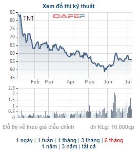 TNS Holdings chốt danh sách cổ đông trả cổ tức bằng tiền và cổ phiếu tổng tỷ lệ 50% - Ảnh 1.