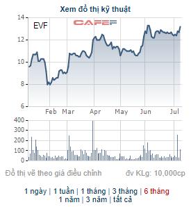 EVN Finance (EVF) chốt danh sách cổ đông phát hành gần 40 triệu cổ phiếu trả cổ tức - Ảnh 2.