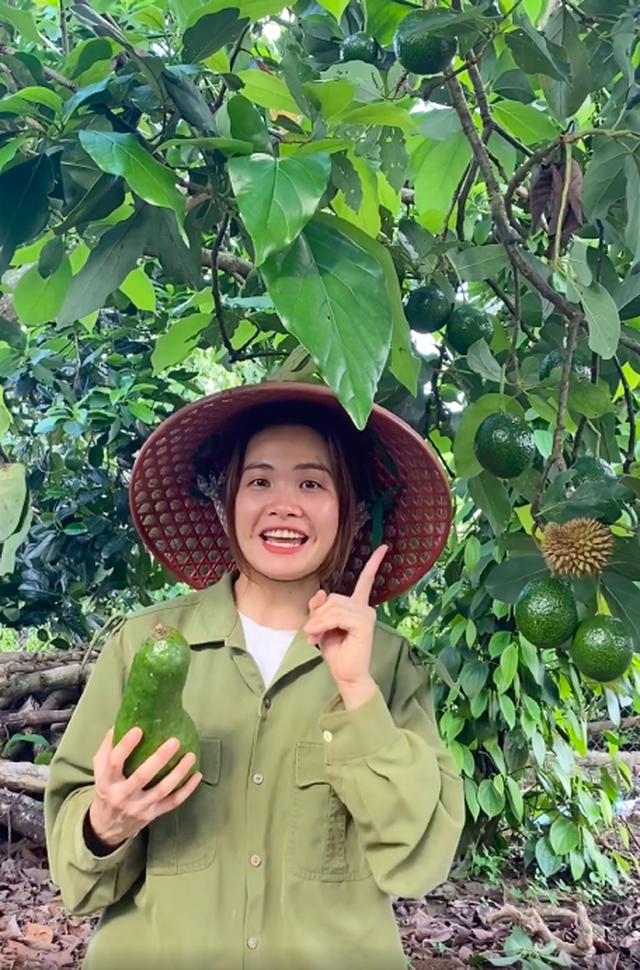 Bỏ Sài Gòn về quê làm vườn, cô nàng gây sốt với loạt clip viral: Sầu riêng, bơ trĩu quả, xem mà không thể kìm lòng! - Ảnh 3.