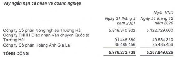 Cấn trừ công nợ sau thương vụ bán 20.744 ha đất, HAGL Agrico (HNG) còn nợ Thagrico hơn 1.265 tỷ đồng - Ảnh 1.