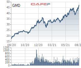 Gemadept (GMD) dự chi gần 362 tỷ đồng trả cổ tức năm 2020 - Ảnh 1.