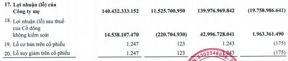 Liên tục bán vốn sau lùm xùm truy thu thuế đến 400 tỷ đồng, Thuduc House (TDH) lãi đột biến 140 tỷ sau 6 tháng và xoá sạch lỗ luỹ kế - Ảnh 2.