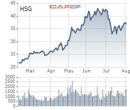 Hoa Sen (HSG): Sắp phát hành 4,4 triệu cổ phiếu ESOP giá 10.000 đồng/cp - Ảnh 1.
