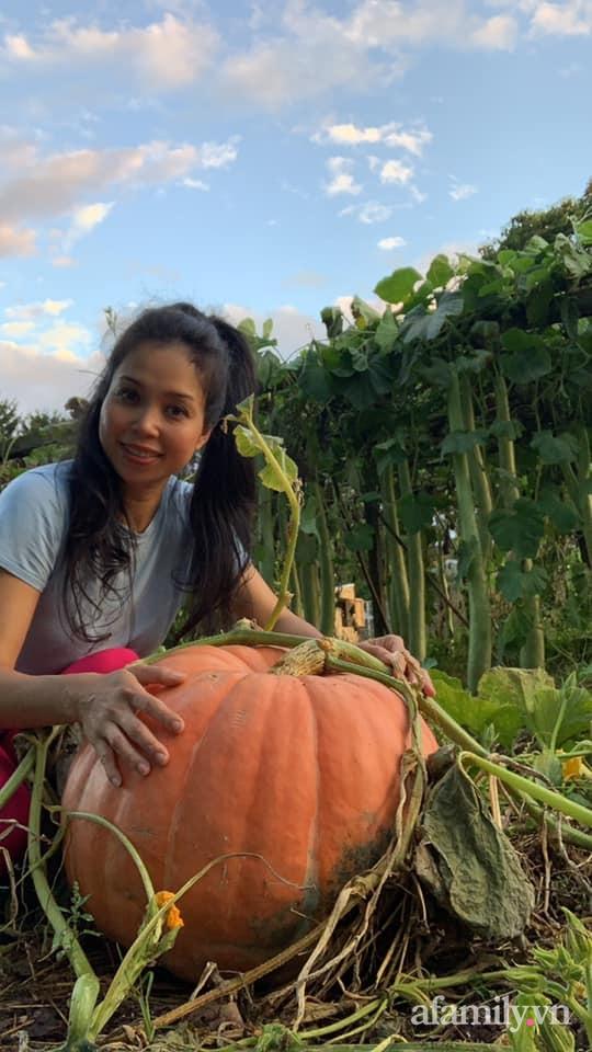 Khu vườn của mẹ Việt sai trĩu rau củ với kích thước khủng - Ảnh 14.