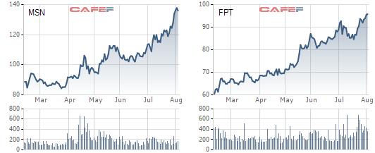 Nắm giữ FPT và MSN, hiệu suất danh mục Tundra Fund tăng trưởng vượt trội trong tháng 7 - Ảnh 1.