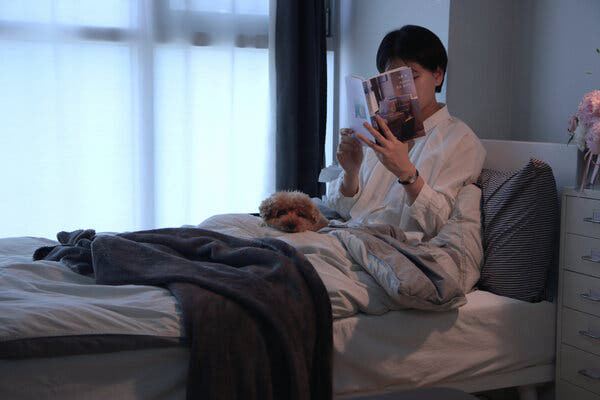 Cuộc sống tối giản nhưng chất lượng cao của nữ Youtuber Hàn Quốc: Người thông minh biết cách biến thời gian ở nhà trở thành một trải nghiệm trọn vẹn - Ảnh 1.