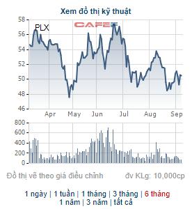 Cổ đông chiến lược Nhật Bản chỉ mua được 2,7 triệu cổ phiếu PLX, trở thành cổ đông lớn của Petrolimex - Ảnh 1.