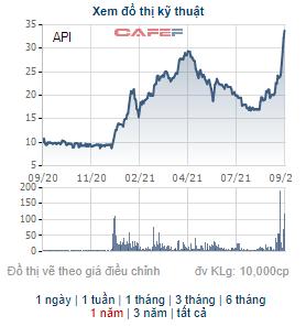 2 cổ đông lớn đã tạm lãi xấp xỉ 50% sau 1 tuần đầu tư cổ phiếu API - Ảnh 1.