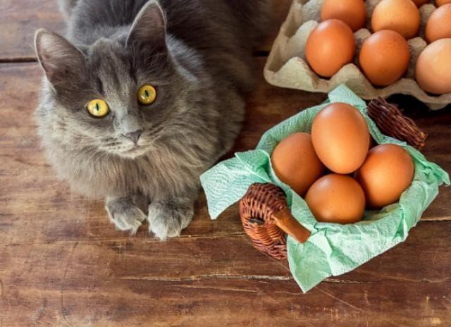 Muốn bữa sáng đủ chất, nhiều người ăn trứng kết hợp với món cực bổ này mà không biết sẽ gây tổn hại sức khỏe - Ảnh 2.