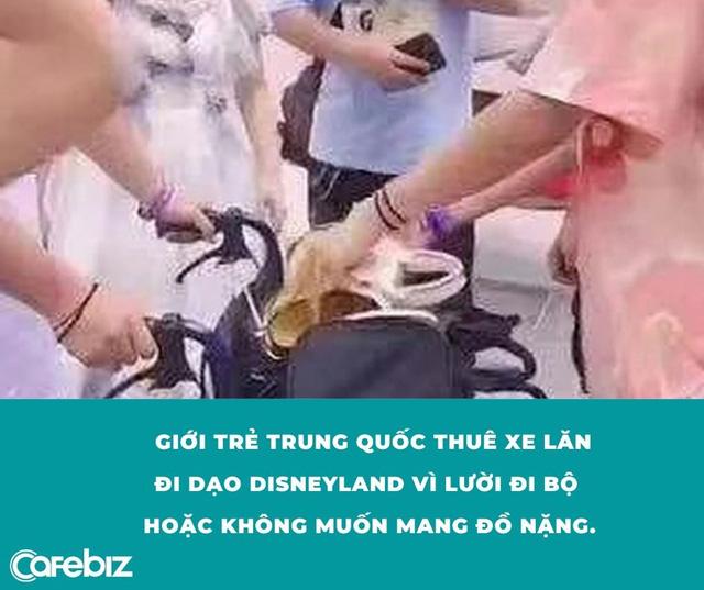 Góc khó hiểu: Giới trẻ Trung Quốc thuê xe lăn ở Disneyland vì... lười đi bộ? - Ảnh 6.