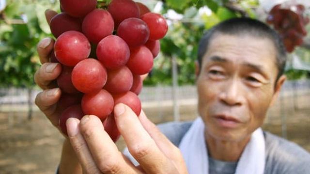 Thói quen mua thực phẩm giúp số người 100 tuổi ở Nhật Bản ngày càng nhiều - Ảnh 3.