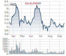 Con gái bầu Đức tiếp tục mua 4 triệu cổ phiếu HAG, nâng sở hữu lên 0,86% vốn - Ảnh 1.