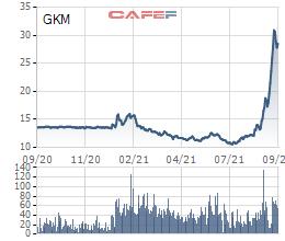 Công ty chứng khoán họ Louis gia tăng sở hữu tại Khang Minh Group (GKM) lên gần 18% - Ảnh 1.
