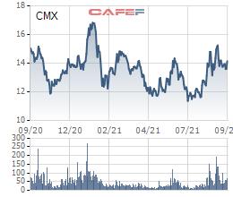 Camimex (CMX) chào bán 30 triệu cổ phiếu riêng lẻ, Chủ tịch và em trai dự kiến mua 45,5% lượng phát hành - Ảnh 3.