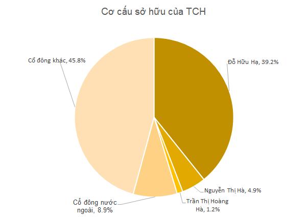 TCH: Tổng Giám đốc đăng ký mua vào 22 triệu cổ phiếu tăng tỷ lệ sở hữu và gắn bó với công ty - Ảnh 1.