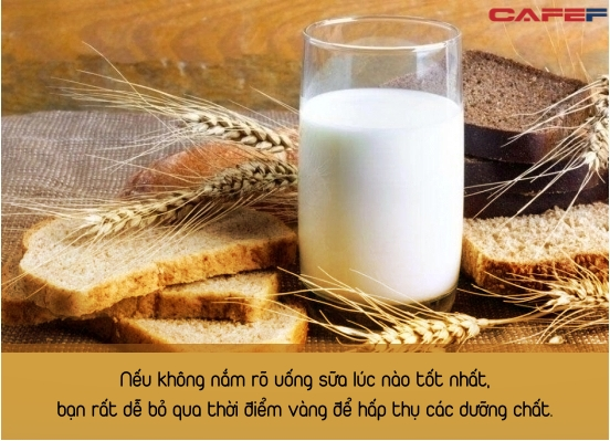 Cùng là uống sữa nhưng uống trước khi ăn và sau khi ăn đem lại hiệu quả hoàn toàn khác nhau: Uống sữa lúc nào tốt nhất, đừng bỏ qua 3 thời điểm - Ảnh 1.