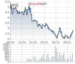 Vừa bán xong gần 37 triệu cổ phiếu HVG, Thành viên HĐQT của Hùng Vương đăng ký bán nốt 2 triệu cổ phiếu còn lại - Ảnh 1.