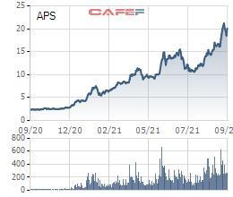 Chứng khoán APEC (APS) chuẩn bị phát hành 1,1 triệu cổ phiếu ESOP với giá bằng nửa thị giá - Ảnh 1.