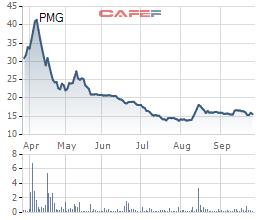 Petro Miền Trung (PMG) lỗ thêm gần 44 tỷ đồng sau báo cáo kiểm toán bán niên 2021 - Ảnh 2.