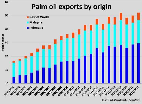 Chuột bọ, hạn hán và thiếu lao động đang bóp nghẹt nguồn cung ứng dầu ăn trên toàn cầu - Ảnh 3.