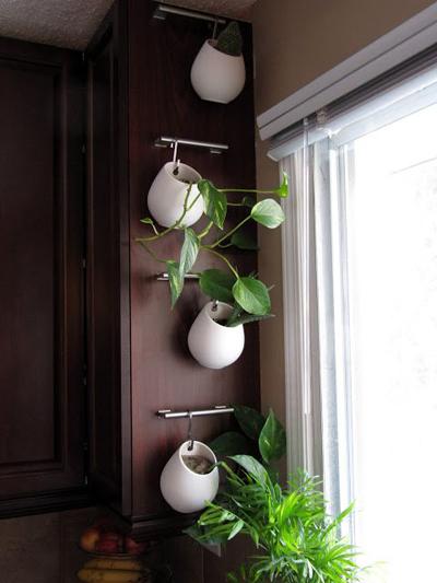 Những chiếc bình và giá treo bán sẵn giúp bạn tận dụng được những mảng tường, bức vách trống.