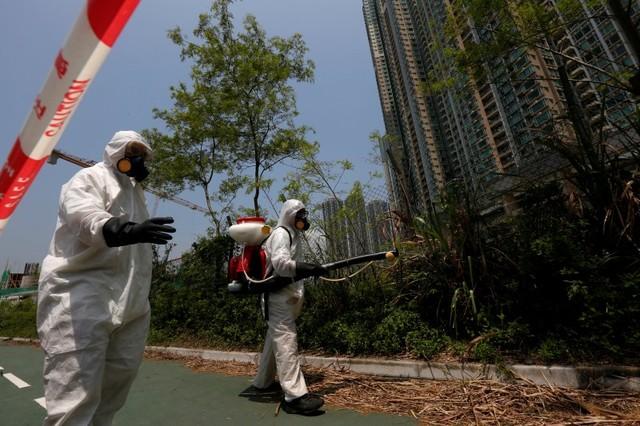 Nhân viên y tế phun thuốc diệt muỗi tại những khu vực cây cối rậm rạp nhằm ngăn virus Zika lây lan. Ảnh: Reuters