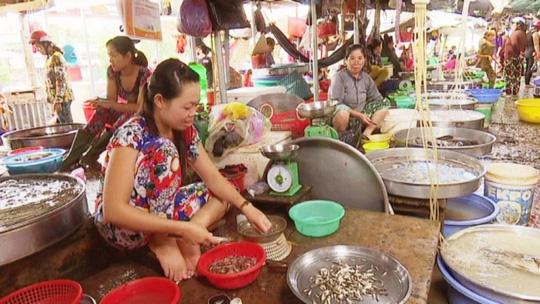 Cá linh non giá 170.000 đồng/kg do đầu mùa còn khan hiếm