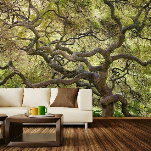 Những cành cây ngoằn nghèo sẽ mang lại cảm giác vô cùng mới lạ cho khách đến thăm nhà bạn.