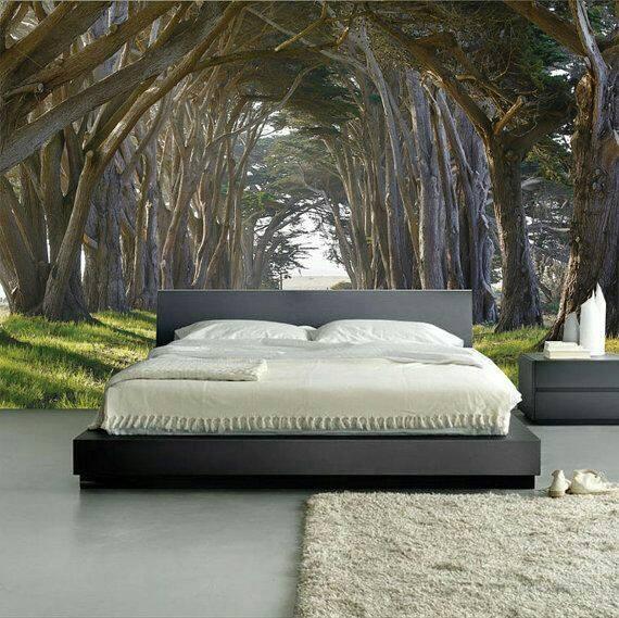 Cảm giác được ngủ dưới bóng mát của rừng cây cũng sẽ vô cùng thú vị.