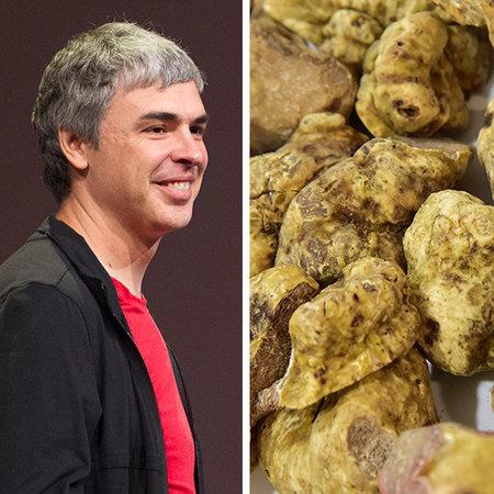 Món ăn yêu thích của Larry Page, đồng sáng lập gã khổng lồ Google, là nấm cục trắng quý hiếm và vô cùng đắt đỏ. Tuy nhiên, với tài khoản 33,3 tỷ USD của CEO Google, ông có thể mua tới hơn 4 triệu tấn nấm này. Nó tương đương với số nấm cục được tìm thấy trên trái đất trong 30 năm.