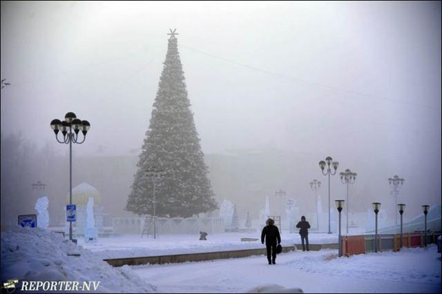 Thời tiết lạnh giá khiến các trường học trong khu vực phải đóng cửa. Phần lớn người dân hạn chế ra đường để tránh cái lạnh tột độ. Đây cũng được coi là mùa đông lạnh nhất trong khu vực 10 năm trở lại đây.
