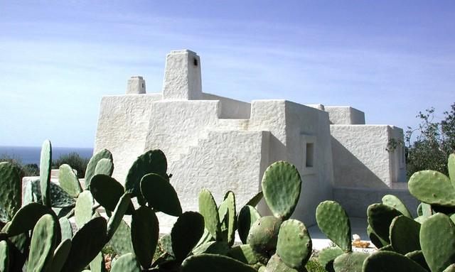 Toàn cảnh ngôi nhà với hình thù độc đáo được làm từ những vật liệu tự nhiên sẵn có ở địa phương.