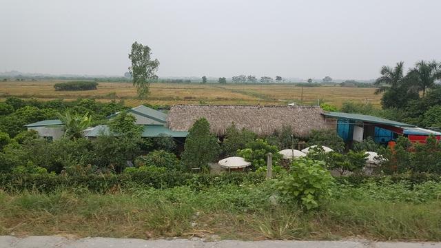 """Nhà ở, nhà hàng được """"mọc"""" trái phép trên đất nông nghiệp ở ven đê sông Đáy, xã An Thượng."""