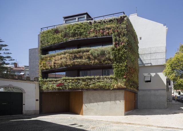 Một công trình độc đáo, khác biệt hoàn toàn với tất cả những ngôi nhà cùng khu phố.