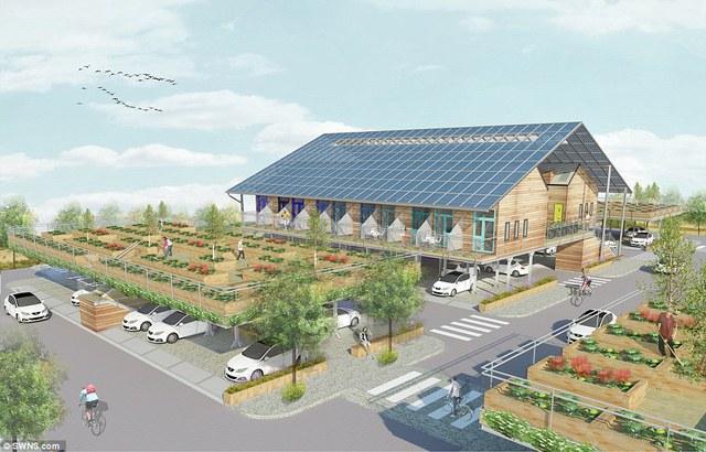 Khu vực bên trên các bãi đỗ xe còn là không gian canh tác, trồng rau lý tưởng cho cư dân.