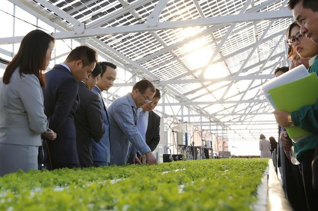 Lãnh đạo Tập đoàn FLC xem xét mô hình trang trại nông nghiệp cao của Farmdo tại Nhật Bản