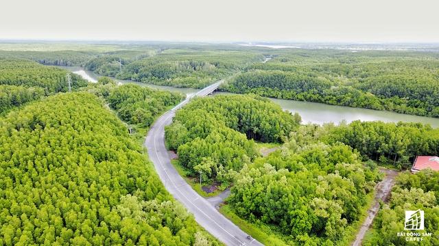 Các nhà đầu tư địa ốc cho rằng để phát triển và bảo tồn Cần Giờ, họ chỉ đầu tư vào khu vực nào nhà nước cho phép.