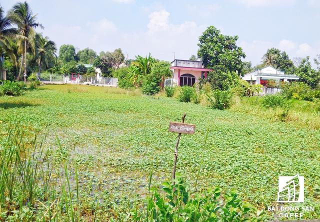 Tại bán đảo Thanh Đa hiện còn nhiều dự án chung cư vẫn chưa được áp dụng xây dựng.