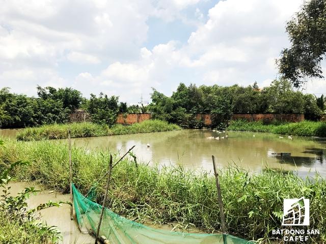 Những phần đất xung quanh dự án từ lâu được Khang Thông muốn mua lại để mở rộng ranh giới có giá 4 triệu đồng/m2 nhưng thương lượng kéo dài vẫn chưa được người dân chấp thuận