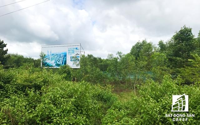 Trên tấm bảng vẽ phối cảnh dự án khu dân cư xã Long Tân và Phú Hội được quy hoạch hoành tráng với những tòa cao ốc, khu dân cư, biệt thự, trung tâm thương mại… Thế nhưng bên trong dự án này chỉ là bãi đất trống để cỏ mọc um tùm. Theo tìm hiểu, dự án này do Công ty Cổ phần Taekwang Vina Industrial làm chủ đầu tư. Dự án có tổng diện tích hơn 55ha và có quy mô dân số 13.044 người.
