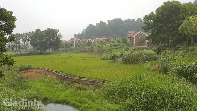 Việc xây dựng các công trình nhà trái phép tại Điền Viên Thôn diễn ra từ năm 2011 đến nay. Ảnh: Cao Tuân