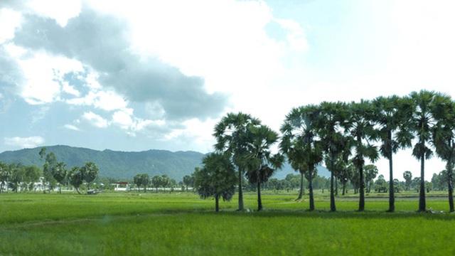 Thiên Cấm Sơn nhìn từ xa.