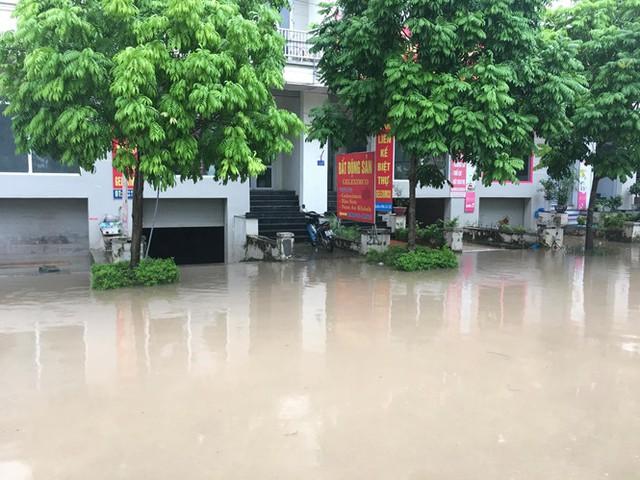 Nhiều cư dân ở đấy vẫn nói có nhau cứ mưa to là họ rẽ sóng ra khơi, được đi thuyền trên phố, được bắt cá trên phố.