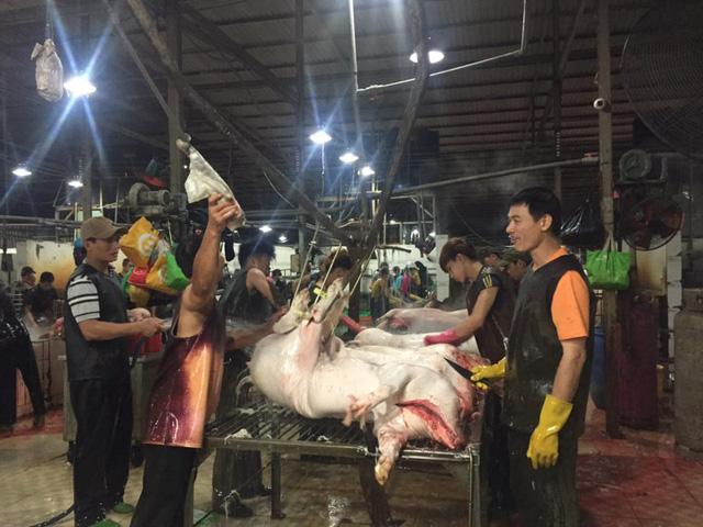 Thương lái nại lí do tăng giá từ chủ ô chảo ở lò giết mổ đề mua giá heo thấp từ người chăn nuôi