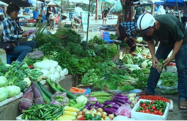 Trong tháng 8 rau xanh ở Đài Lạt và Hà Nội tăng giá mạnh do mưa lớn kéo dài