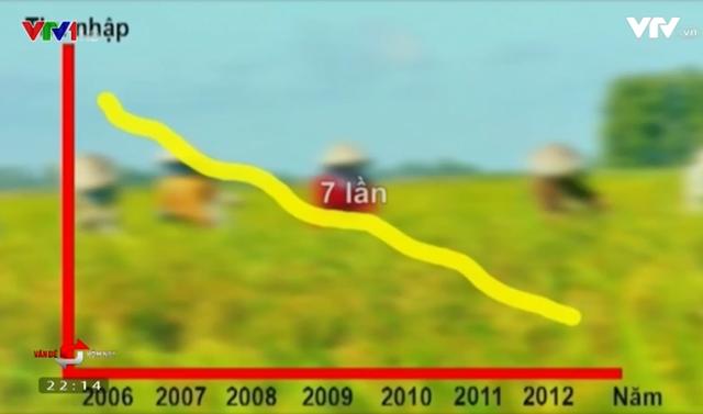 Thu nhập nông dân trồng lúa giảm 7 lần so với 10 năm trước.