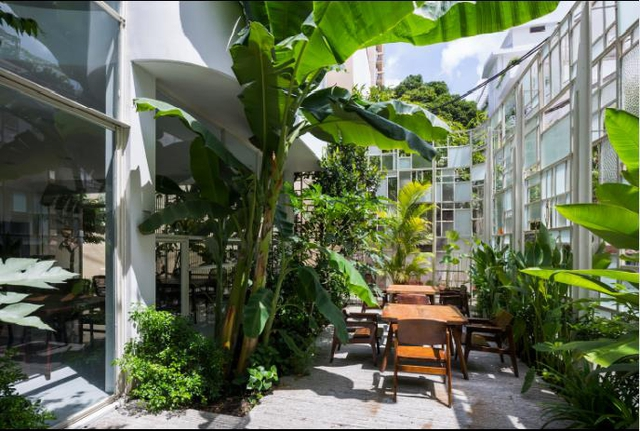 Cây xanh không chỉ làm đẹp mà còn mang lại bầu không khí tươi mát, sạch sẽ cho nhà hàng.