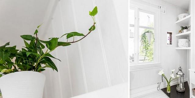 Những chậu cây tươi tắn có mặt ở khắp mọi nơi khiến không gian bừng sức sống.