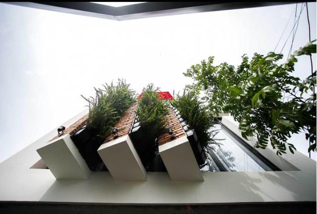 Những chậu cây xanh lạ mắt được trồng thẳng đứng trước mặt tiền tầng 2 ngôi nhà giúp thanh lọc không khí cho toàn bộ không gian sống và sinh hoạt tầng 2.